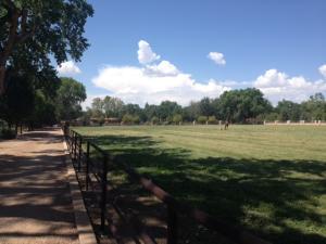 West pasture with drive longshot 1