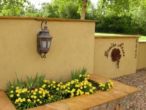 Front entry to Bonita Rosas planter