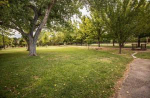Mature Pro Designed Landscape