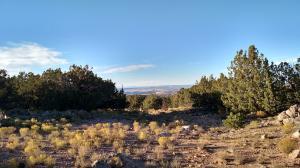 Nighthawk Canyon Rd.