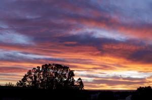 64 Sunset