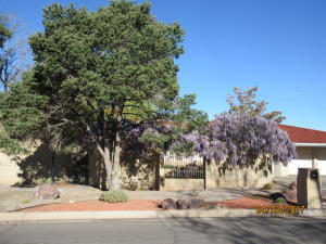 1305 STAGECOACH LANE SE, ALBUQUERQUE, NM 87123  Photo 16
