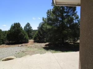Left side yard