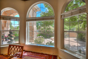 9509 DANCING RIVER DRIVE NW, ALBUQUERQUE, NM 87114  Photo 16
