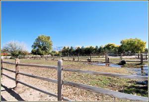 Good Pasture 2