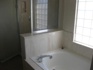 bath1showerandtub
