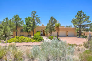 Property for sale at 171 Big Horn Ridge Drive NE, Albuquerque,  NM 87122