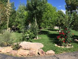 2 FRONT YARD (9)