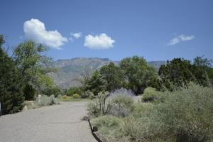 Property for sale at 996 Lynx Loop NE, Albuquerque,  NM 87122