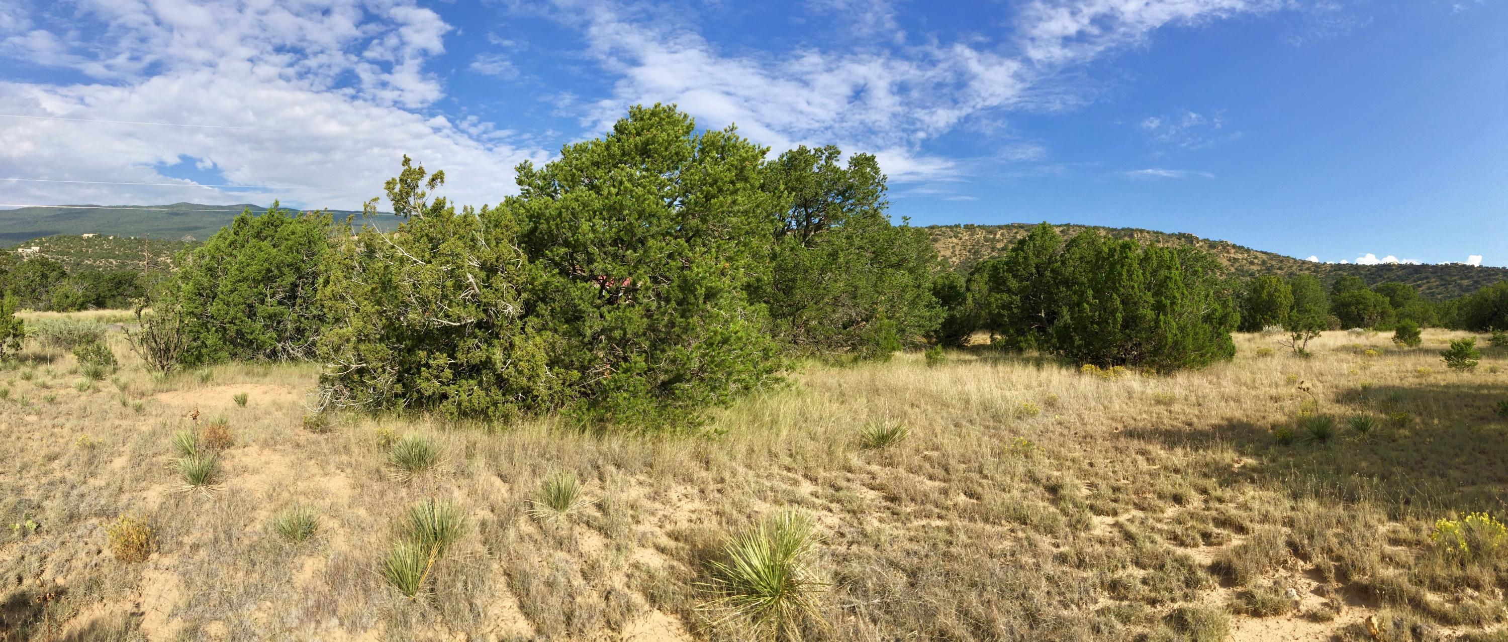 Shady Oak Tijeras, NM