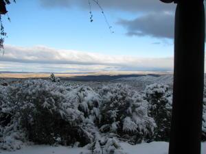 Winter in Placitas