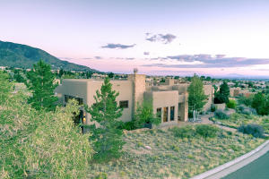 13208 PINO RIDGE PLACE NE, ALBUQUERQUE, NM 87111  Photo 6