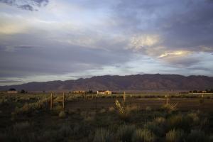 New Mexico11