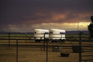New Mexico30(1)