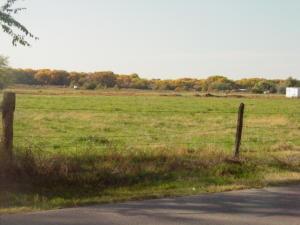 Field across the street
