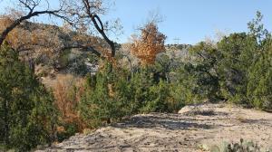 creek lot site