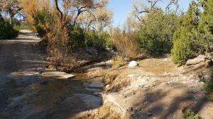 creek lot water