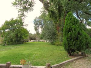 509 Los Ranchos 048