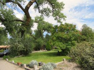 509 Los Ranchos 067