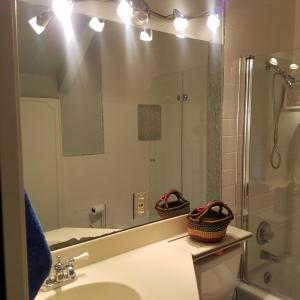 guest bath w/shower