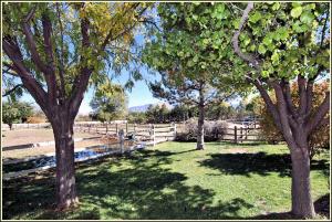 Pasture Park