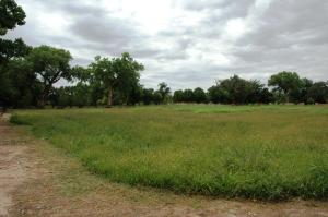 6930 SW pasture view cloudy day - Copy -