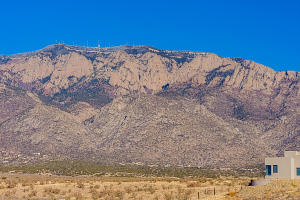 10201 Elena-Mt View-4