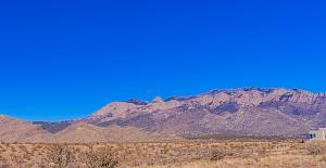10201 Elena-Mt View-2