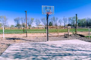 50 basketball court