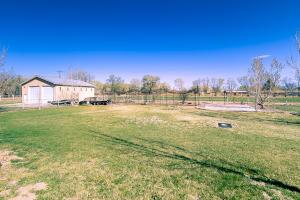 52 backyard view