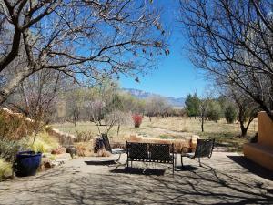 Back Yard w/Sandia Mountain View