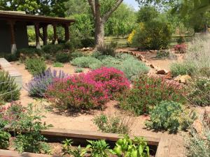 8501 Front Flower garden