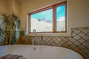 Master Suite Soaking Tub with View
