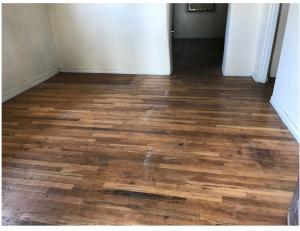 Hard Wood Floor 1