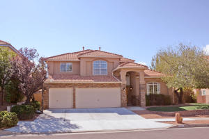 12032 CARIBOU AVENUE NE, ALBUQUERQUE, NM 87111  Photo 15