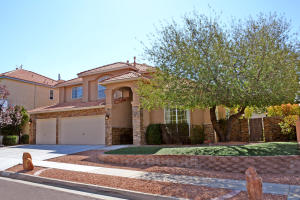 12032 CARIBOU AVENUE NE, ALBUQUERQUE, NM 87111  Photo 16