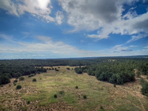 Property for sale at 151 Alley Road, Edgewood,  NM 87015