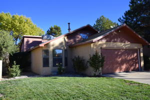 10909 HAINES AVENUE NE, ALBUQUERQUE, NM 87112  Photo 1