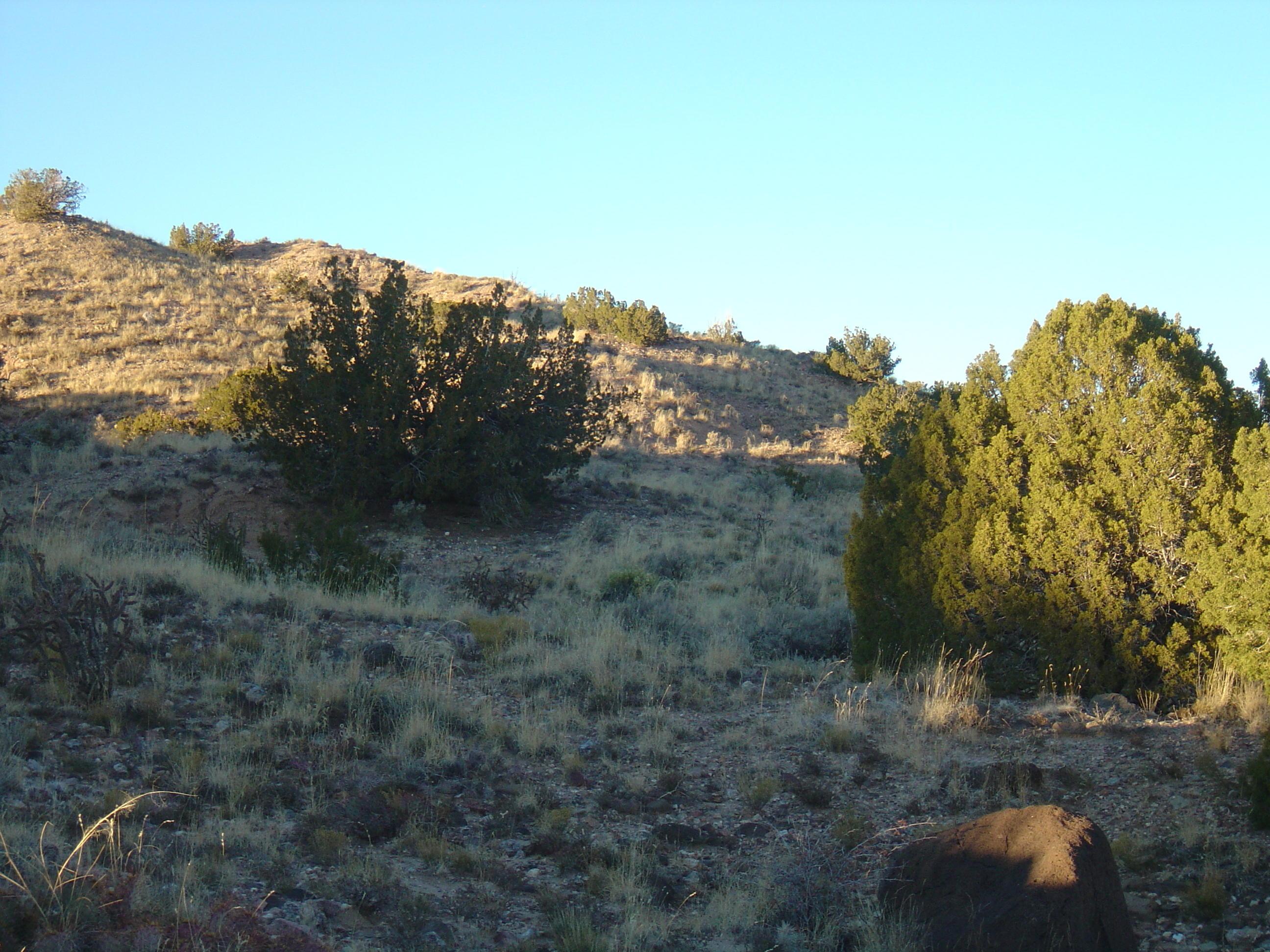 2311 Desert Zinnia Road, Rio Rancho, New Mexico