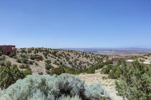 2 SANDHILL CRANE CIRCLE, PLACITAS, NM 87043  Photo