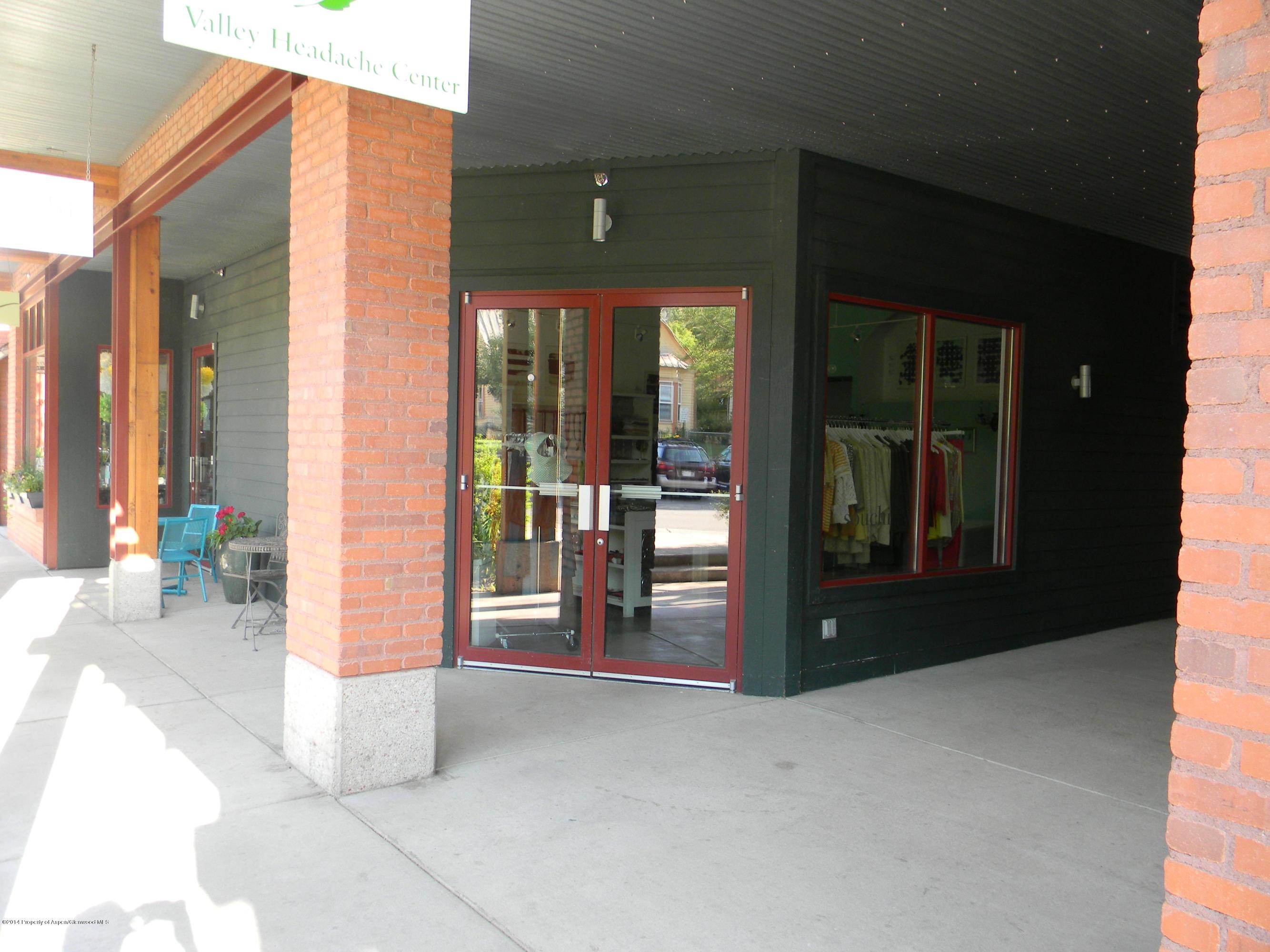 227 Midland Avenue, 15a - Basalt Proper, Colorado