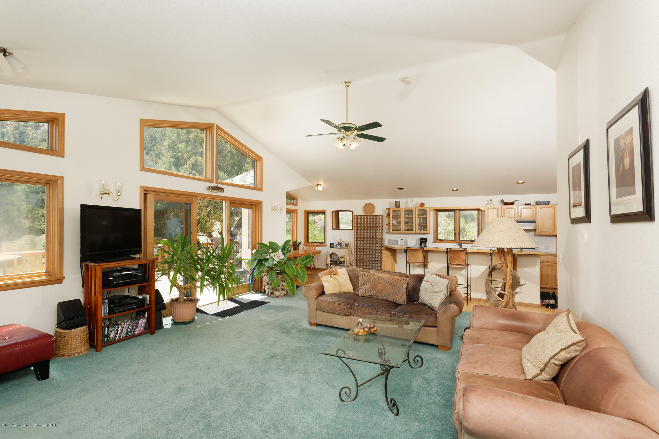 1853 County Road 109 Glenwood Springs Photo 8