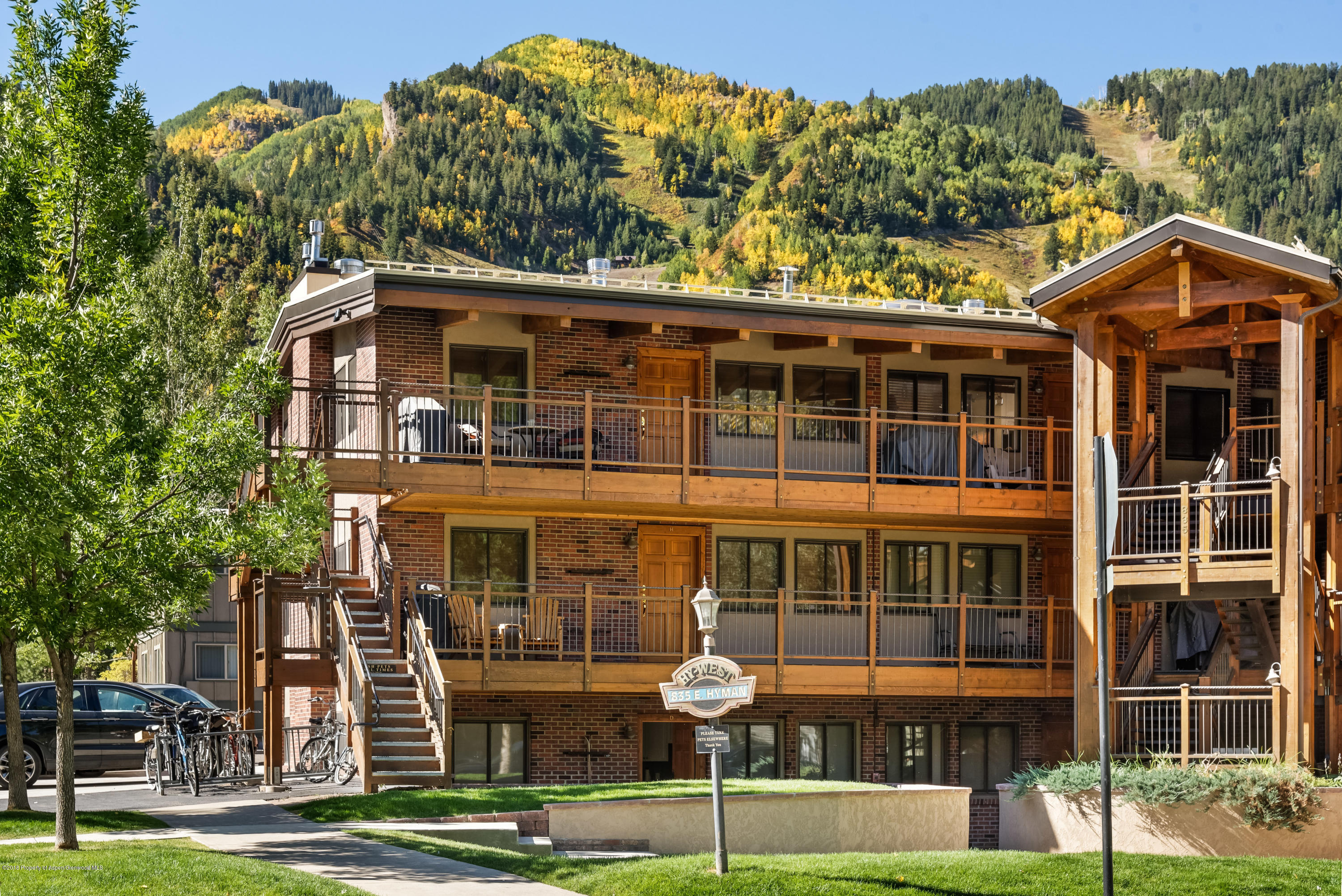 835 E Hyman Avenue, Unit D - Aspen, Colorado