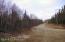 Jacobson view driveway 1
