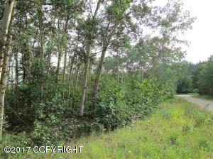 Property for sale at 000 Ft. Greely Ridge Road, Delta Junction,  AK 99737