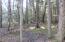 trees-open_kov