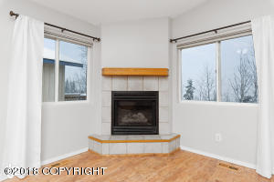 gas fireplace AND Mtn VIEWS
