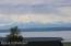 Veiw Mt. Susitna