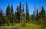 C7 Alaskan Wildwood Ranch(r) (1)