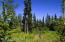 C7 Alaskan Wildwood Ranch(r) (4)